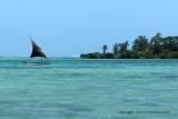 2 weeks on Mauritius island in march 2010 - 522MK3_8366_DxO WEB.jpg