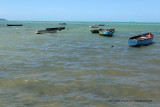 2 weeks on Mauritius island in march 2010 - 538MK3_8382_DxO WEB.jpg