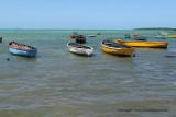 2 weeks on Mauritius island in march 2010 - 539MK3_8383_DxO WEB.jpg