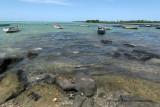 2 weeks on Mauritius island in march 2010 - 540MK3_8384_DxO WEB.jpg