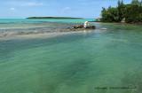 2 weeks on Mauritius island in march 2010 - 546MK3_8390_DxO WEB.jpg