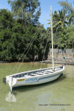 2 weeks on Mauritius island in march 2010 - 553MK3_8397_DxO WEB.jpg