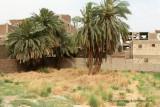 Louxor - 27 Vacances en Egypte - MK3_8863_DxO WEB.jpg