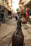 Louxor - 76 Vacances en Egypte - MK3_8916_DxO WEB.jpg