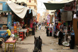 Louxor - 83 Vacances en Egypte - MK3_8923_DxO WEB.jpg