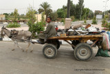 Louxor - 109 Vacances en Egypte - MK3_8949_DxO WEB.jpg