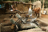 Louxor - 115 Vacances en Egypte - MK3_8955_DxO WEB.jpg