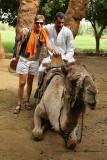 Louxor - 143 Vacances en Egypte - MK3_8984_DxO WEB.jpg