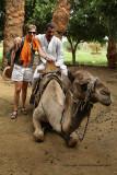 Louxor - 144 Vacances en Egypte - MK3_8985_DxO WEB.jpg