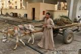 Louxor - 175 Vacances en Egypte - MK3_9016_DxO WEB.jpg
