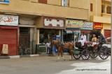 Louxor - 190 Vacances en Egypte - MK3_9031_DxO WEB.jpg