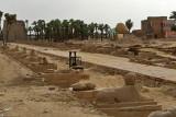 Louxor - 197 Vacances en Egypte - MK3_9039_DxO WEB.jpg