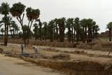 Louxor - 198 Vacances en Egypte - MK3_9040_DxO WEB.jpg