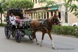 Louxor - 241 Vacances en Egypte - MK3_9087_DxO WEB.jpg