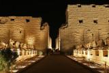 Egypte 2010 - Son et lumières du temple de Karnak / Sound & lights at the Karnak temple