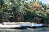 Assouan promenade en felouque - 1051 Vacances en Egypte - MK3_9928_DxO WEB.jpg