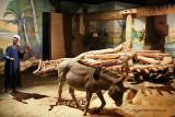 Assouan visite du musee Nubien - 879 Vacances en Egypte - MK3_9753 WEB.jpg