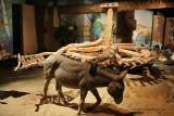 Assouan visite du musee Nubien - 881 Vacances en Egypte - MK3_9755 WEB.jpg