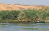 Assouan promenade en felouque - 1091 Vacances en Egypte - MK3_9968_DxO WEB.jpg