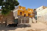 Assouan promenade en felouque - 1172 Vacances en Egypte - MK3_0050_DxO WEB.jpg