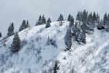 Balade en raquettes en haut du Christomet, au-dessus de Megève
