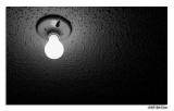 11/1 - Challenge:  Light Bulb