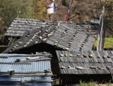 Hongtsho roofs