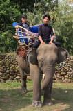 Elephants at Malikha Lodge