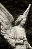 _MG_9183 highgate cemetery.jpg