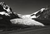 Athabasca Glacier, Columbia Icefields, Jasper National Park, Alberta