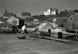 The Photographer, Peggys Cove, Nova Scotia