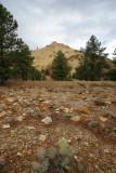 Big Rock Candy Mountain, north of Marysvale in Piute County, Utah