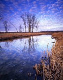 85 Glacial Park, McHenry County, IL