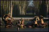 W-2009-02-01 -0115- Versailles - Alain Trinckvel.jpg