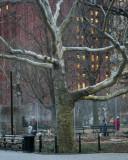 W - 2009-12-16-0010- New York -Alain Trinckvel.jpg
