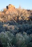 M---2009--11---01--0897---Canyonland---Alain-Trinckvel.jpg