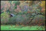WM-2007-10-20--1117---Great-smoky---Alain-Trinckvel-2.jpg