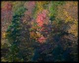 WM-2007-10-20--0029---Great-smoky---Alain-Trinckvel-4.jpg