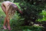 Checking the Wild Turkey Nest 05_20_09.jpg