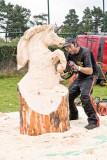 Carve Carrbridge 2008