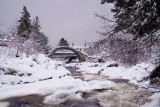 Carrbridge in Winter.jpg