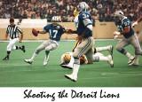 detroit.lions.w.jpg