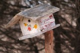 Bird Houses/Nesting Boxes