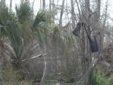 Katrina 2 years later, Bay St Louis, MS