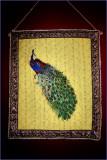 Posh Peacock.JPG
