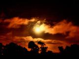 Moonlight from my window.JPG