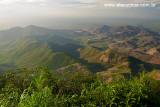 Pico Alto, Pacoti, Serra de Baturite, Ceara 8558