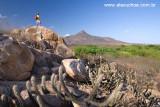 Pico do Cabugi, Lages, Rio Grande do Norte 0355.jpg