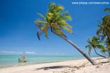 Praia do Patacho, São Miguel dos Milagres- AL  8890-2