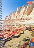 Capa Sulamericana de Cadernos Coleção 2006